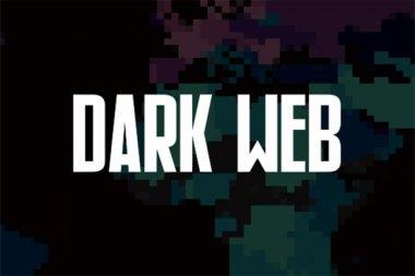 谁干的?暗网最大网络托管商被黑,6500个网站遭彻底删除