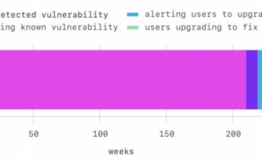 开源软件漏洞的发现周期超过四年
